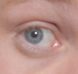 My left eye. Eye lashes are not that clear. But they are beautiful.